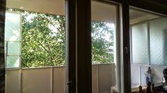 KIMMO FRAMELIUS: totisena katselin ulos ikkunasta