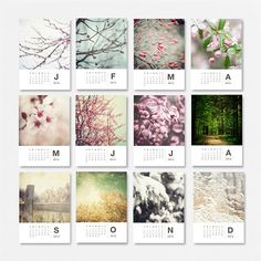 Use the current version as my desk calendar, with the added bonus of 12 beautiful prints to frame at the end of each month! On sale until Monday, $22.50!