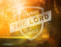 My Strength & My Shield - incourage.me - Sunday Scripture -  Psalm 28:7