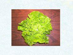 U.H. Manoa Lettuce | Baker Creek Heirloom Seed Co