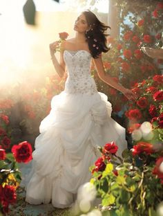 Belle Disney Wedding Dress Alfred Angelo