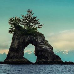 Natural arches on the coastline of Alaska's Kenai Fjords National Park   U.S. Department of the Interior @usinterior Instagram photos | Websta