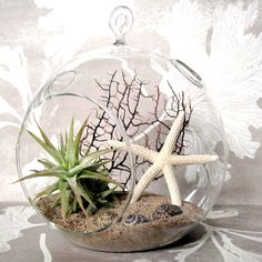 We have all these natural plants and shells within our reach in Florida. I'm going to make one like this!
