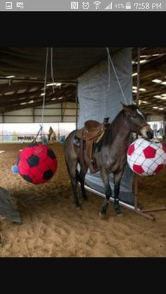 216 best Horse Games images on Pinterest in 2018 | Horses, Horse and ...