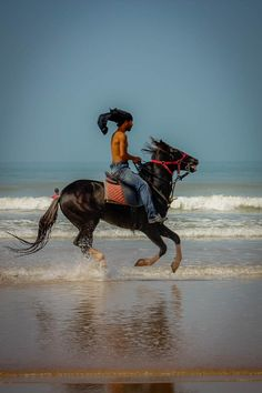 This graceful rider fought for my attention with the camels and stunning sunsets on Essaouira beach in Morocco. It's a photographer's paradise and I took my shots. To see the collection of a dozen photos, read the article.