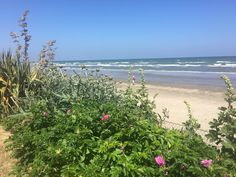 Stunning weather for the beach, no better place to enjoy than at The Cottages.