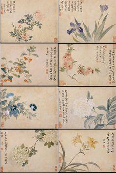 华嵒 花鸟草虫图册八开 上海博物馆藏. Hua Yan (1682 – 1756) (華嵒) was a Qing Dynasty Chinese painter. He was born in Shanghang (上杭) Fujian province and lived in Yangzhou and later in Hangzhou.Yan's work is within the tradition of the Yangzhou school and is often named as one of the Eight Eccentrics of Yangzhou.