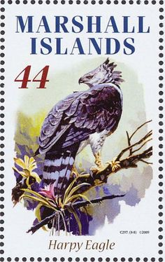 Harpy Eagle stamps - mainly images - gallery format