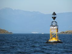 Horswell rock east cardinal buoy