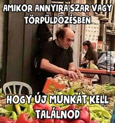 Ezen szétröhögtem az agyam :D Funny Cute, Really Funny, Hilarious, Funny Images, Best Funny Pictures, Funny Gifs, Morning Humor, Twisted Humor, Funny Posts