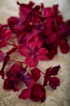 25 Silk Hydrangea Blossoms in Magenta Pink ... silk by simplyserra, $4.75