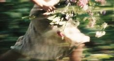 from the film Atonement Spring Awakening, Atonement, Disney Tangled, Rapunzel, Daydream, Blur, Creatures, In This Moment, Pictures