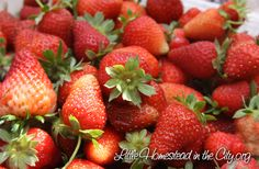 Prevent moldy berries - 1 part vinegar to 10 parts water, swirl berries, drain, refrigerate.