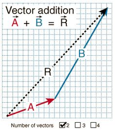 It Contains Classwork About Vector Multiplication By A Scalar