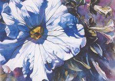 Ann Pember - White Petunia