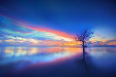 Tree and Sky by Chaiyun Damkaew on 500px