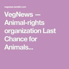 VegNews — Animal-rights organization Last Chance for Animals...