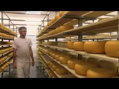 How cheese is made at Gunns Hill Artisan Cheese - YouTube