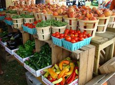 Farmers markets are the only place to shop for food - as well as the seafood markets for fresh shellfish and fish.