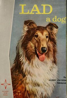 """Lad a Dog"" is a great, well-written book for those animal loving kids out there.  Appropriate for 8+."