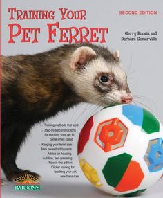 Training Your Pet Ferret (Training Your Pet (Barron's)) « Library User Group