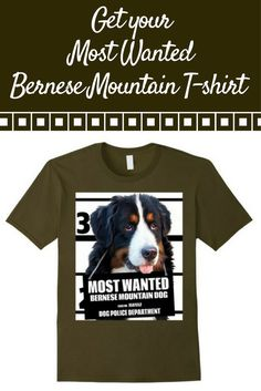 Most Wanted Bernese Mountain Dog T-shirt - Dog Tee Shirts -- 100% Cotton. Imported. Machine wash cold with like colors, dry low heat. Anvil relaxed fit, blue (royal blue), gray 2 types (asphalt & slate), olive, yellow (lemon), crew neck tee, sayings, quotes, unisex, man, women, girls, boys.Lightweight, Classic fit, Tear Away label, Double-needle sleeve and bottom hem.Dog Lover t shirts, Dog Mugshot t-shirts, Bernese Mountain Dog tee shirts, with graphics. 4.5 oz 100% Combed Ringspun Cotton,