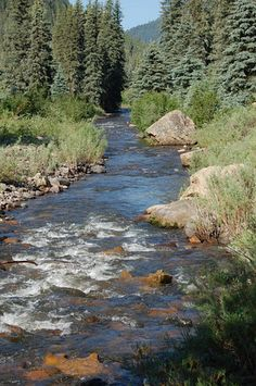 Along the Piedra River Trail in Pagosa Springs, CO