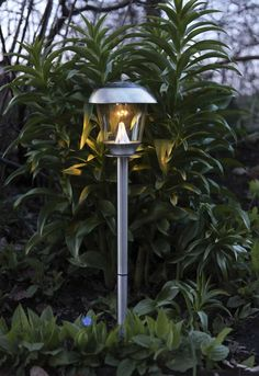 the quality solar lights