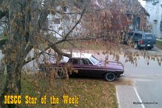 MSCC Nov 15 Star of the Week (Nov 9-15) -a humble 4-door sedan: http://mystarcollectorcar.com/mscc-november-9-star-of-the-day-dodge-boogie-van-this-is-why-the-70s-were-so-much-fun/ #63Plymouth #Belvedere