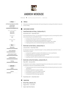 Sample bartender resume examples hospitality cv templates free free bartender resume sample template example cv yelopaper Images