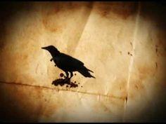 www.gotham-tv .com - motion graphic animation spot raven