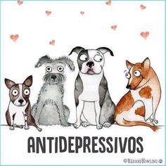 Os melhores!!! #regram @auau_care #frases #humor #cachorros #terapia #auaucare
