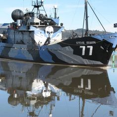 Anti-whaling group Sea Shepherd is preparing its fleet to head to the Southern Ocean for whaling season - Sea Shepherd's director of ship operations, Peter Hammarstedt, said if the Japanese whalers did not show up this year, the group would instead target illegal fishing in the Southern Ocean.