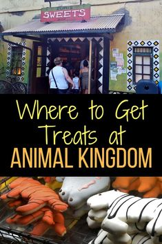 Where to go for treats at Animal Kingdom. You can find Monkey, Panda and Elephant Candy Apples, Zebra and Giraffe Sugar Cookies at more at this little shop in Animal Kingdom at Walt Disney World. #WDW #AK #Disney #Treats #Cookies #DisneyTips
