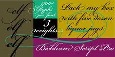 Bickham Script Pro® - Desktop font « MyFonts - Not free, but really pretty