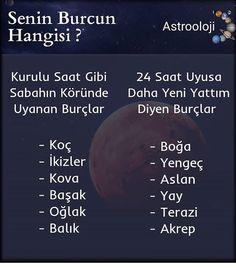 SİZ HANGI BURCSUNUZ ?  Beğen, yorum ve kaydet ile destek olabilirsiniz😊 • Burçlarla merak ettiğiniz her şey bu sayfada @burckral  Takip… Sagittarius, Astronomy, Horoscope, Zodiac Signs, Leo, Stars, Astrology Signs, Star Constellations, Sterne