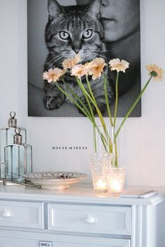 I like the picture of the cat! Maybe a DIY for me and my cat(s)?!