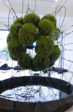 """32SW Stay Green/Flying Garden/Air-Port-City__,"" by Tomás Saraceno. Sometimes art makes Earth Day happen in very specific places."