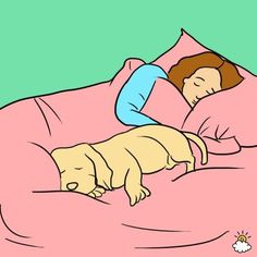 7 Surprising Reasons Your Dog Should Sleep On Your Bed Every Night - There are actual health benefits to letting your four-legged best friend spend the night, and it isn't just you who's better for all that cuddle time. It's better for your dog, too! I Love Dogs, Cute Dogs, Animals And Pets, Cute Animals, Sleeping Dogs, Dog Care, Puppy Care, Dog Mom, Dog Training