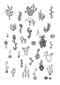 Terrarium - Mini carte postale Print - daniellesparenberg Sketchbook Illustration - noir blanc fleur pousse arbre cactus champignons succulentes jardin