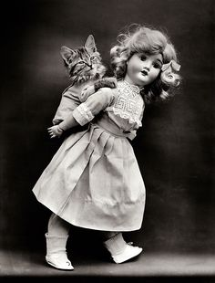 Harry W. Frees - Kitten being carried on back of doll, 1914.