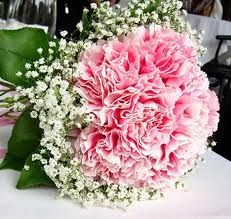 very small carnation arrangement for Natalie to toss to the kids. Color doesn't matter although I think Natalie would like pink.