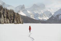 This winter wonderland... by Hello Emilie on 500px