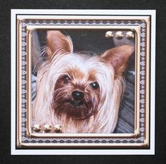 JJ LOVE MY DOG YORKSHIRE TERRIER 8X8 by Marion Kimberley-Scott