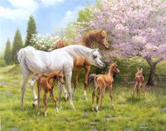 Mary Haggard (c) Fawn - arabian horse painting with blossom trees and deer fawn. This is one of the most amazing Arabian horse paintings I've ever seen - there is a gentleness and wonder that is captivating!