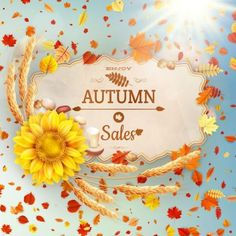Autumn sale labels with sunflower and leaves background vector 07 257010 - https://www.welovesolo.com/autumn-sale-labels-with-sunflower-and-leaves-background-vector-07-2/?utm_source=PN&utm_medium=welovesolo59%40gmail.com&utm_campaign=SNAP%2Bfrom%2BWeLoveSoLo