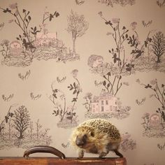 The woodlands wallpaper is a wonderfully whimsical adventure into an enchanted forest of surreal and extraordinary fairy tale creatures. Modern Family, Scandinavian Design, Decorative Accessories, Fairy Tales, Vintage World Maps, Creatures, Woodlands Wallpaper, Brown, Illustration