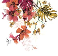 Fig. 7. Cabin Mural: Oleander, little orchids and hummingbirds