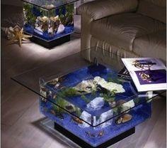 Aquarium....