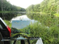 Here's a photo of my painting in the landscape